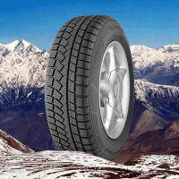 Continental Winter Contact TS 790 225/60 R15 96H