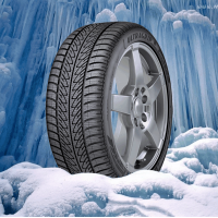 195/55 R16 GOODYEAR ULTRA GRIP 8 PERFORMANCE MS 87 H * (C) (B) (66)